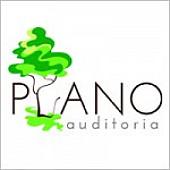 Plano Auditoria